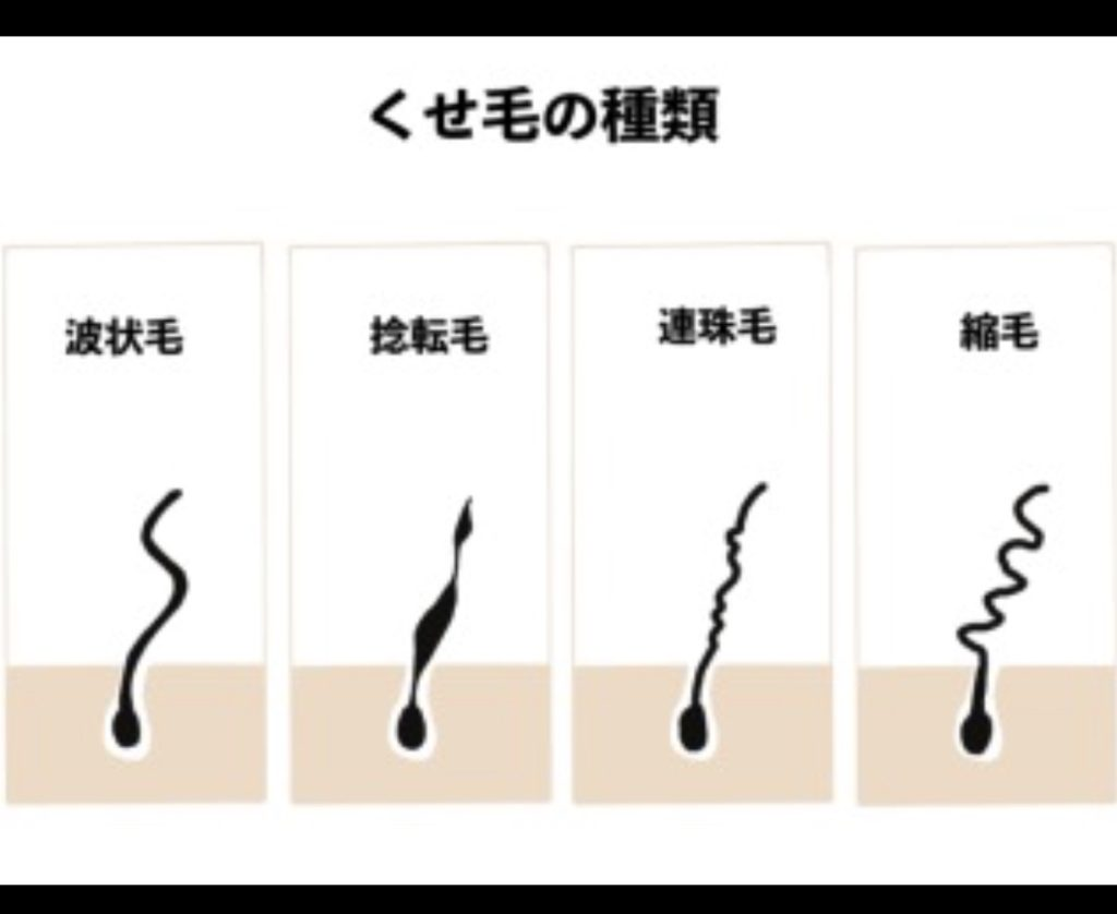 縮毛矯正 くせ毛の種類 生駒の美容室